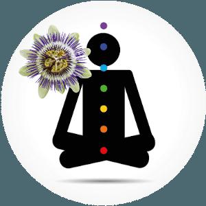 Ruhe bewahren mit Passionsblume